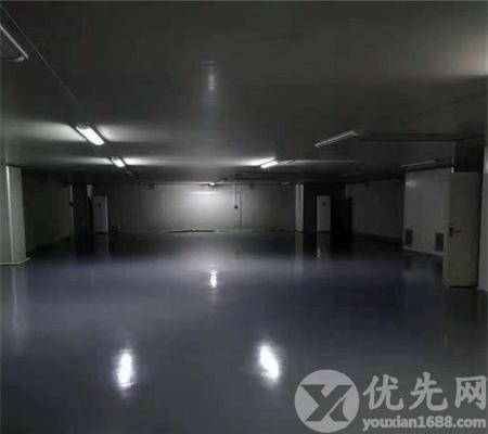 松崗羅田工業區精裝550平廠房出租 帶無塵車間