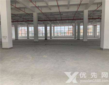 惠州惠東白花全新紅本工業園2萬平米低價招租500平起分租